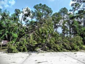 2020.04.09 Tornado Damage 19 IMG 20200409 115028106