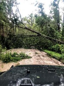Tornado Damage April 23, 2020